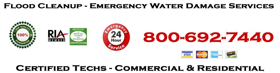 Water Damage Restoration Pros